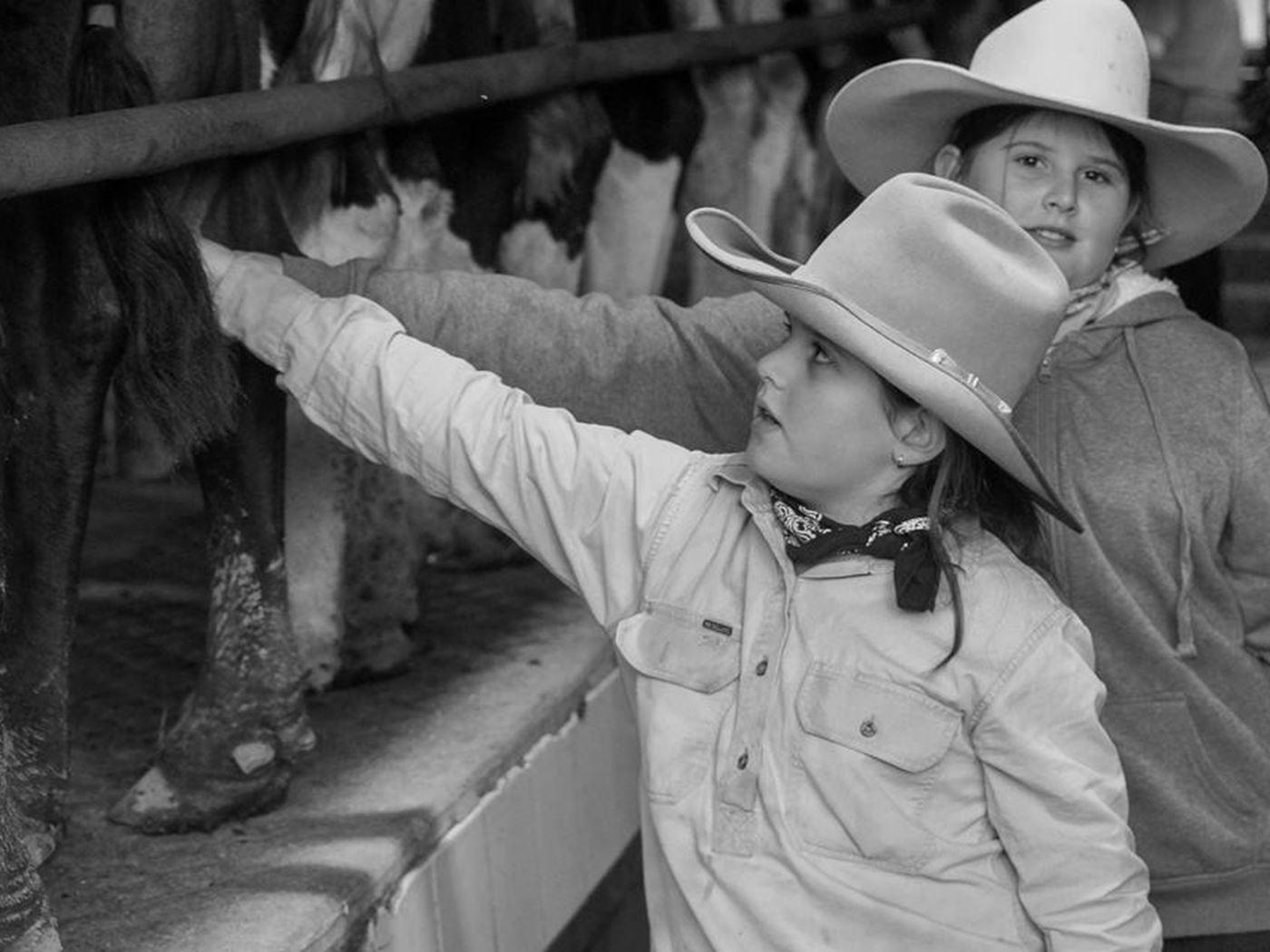 Dairy Farm Milking Tours & Crowd Funding
