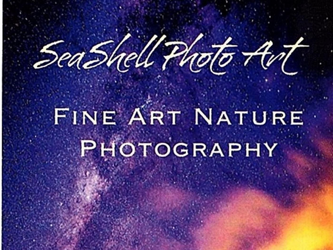 Sea Shell Photo Art