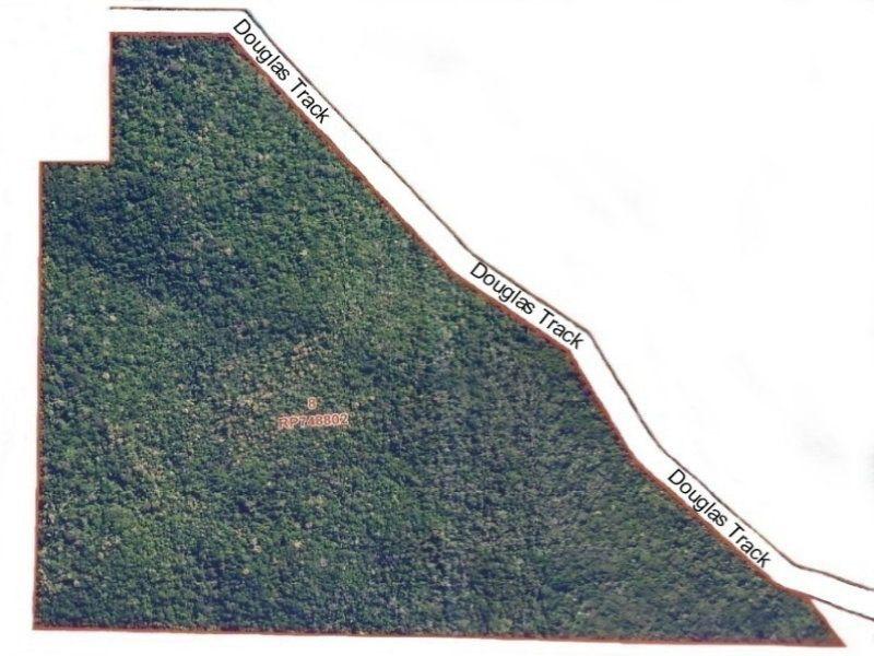 Pristine Mixed Rainforest 63 Ha (156 Acres)